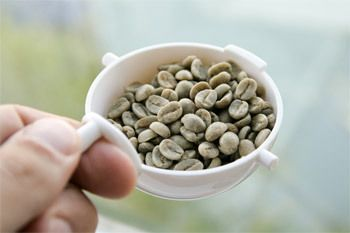 cafe-verde-o-antioxidante-da-vez
